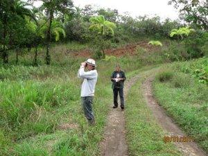Pangola Reserve entrance road