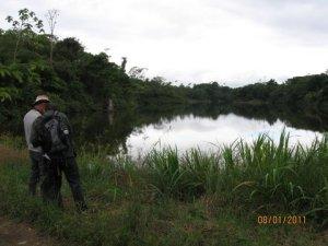 Pangola Laguna
