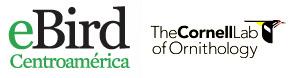 eBird CentroAmerica