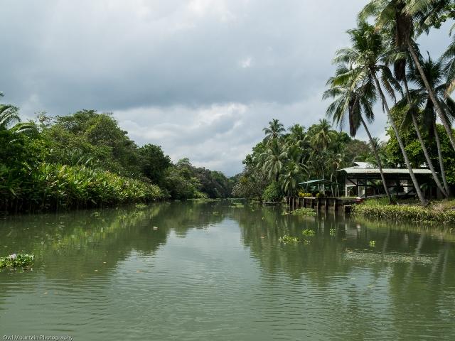 Wyprawa w drzunglę rzeką Rio Sierpe i Estero Azul