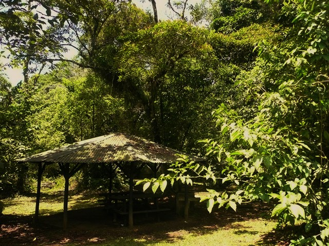 Guayabo MonumentoPicnicWeb