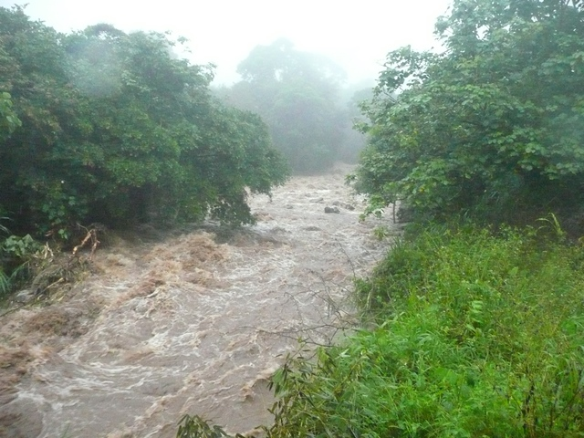 "The Rio Guayabito, the ""Little Guayabo"", at San Antonio, looking downstream from the bridge"