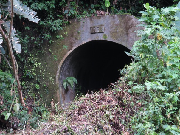 Tunnel Peralta