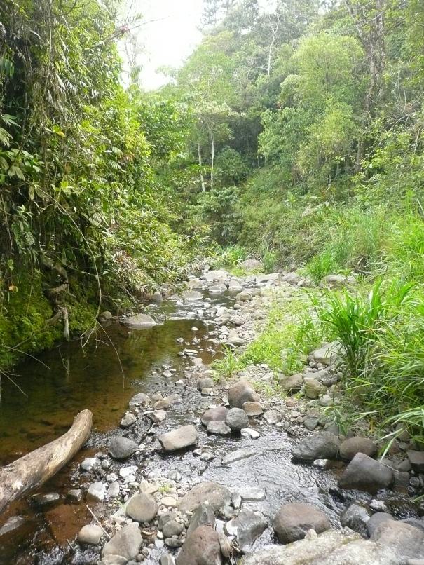 Quebrada La Loca at don Martin's