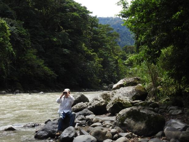 Corozal, Rio Pacuare (125)